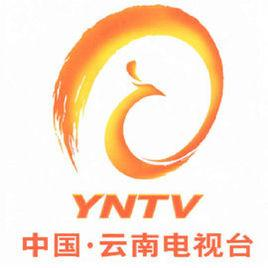 云南电视台公共频道电视广告
