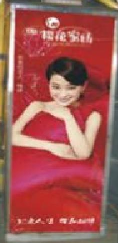 柳州市公交车车内投币箱广告-易播网